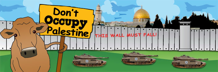 Don't Occupy Palestine